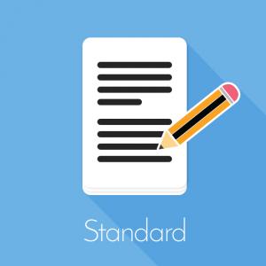 standard paper editing service