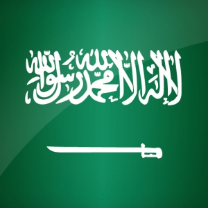 Arabic Technical Translation